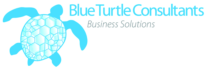 Blue Turtle Consultants